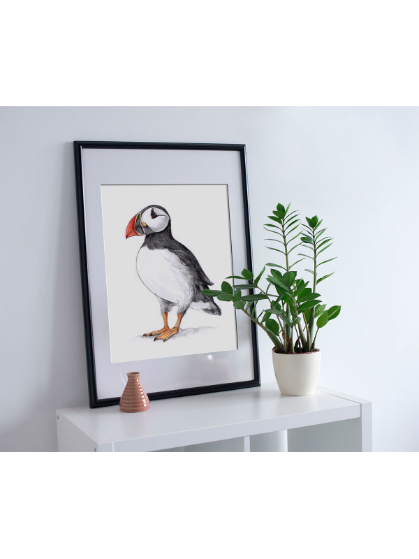 Atlantic Puffin – A4 fine art prints, limited edition for each by Aga Grandowicz