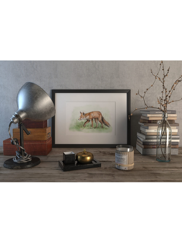 Red fox – original artwork by Aga Grandowicz.