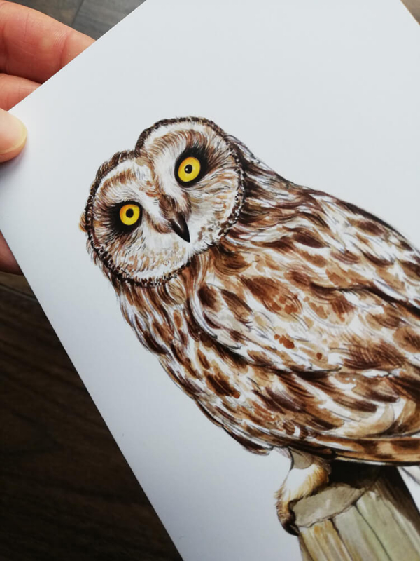 Short-eared-owl-artwork-greeting-card-by-aga-grandowicz_closeup