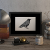 Crow – original artwork by Aga Grandowicz.