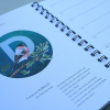 European-Birds-Diary-by-Aga-Grandowicz_December_Bullfinch