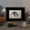 Peregrine falcon #2 – original artwork by Aga Grandowicz