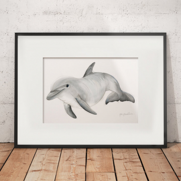 Bottlenose dolphin – original artwork by Aga Grandowicz
