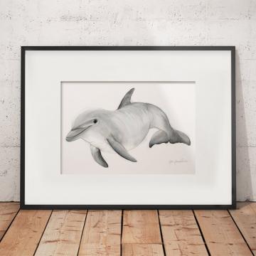 Bottlenose dolphin –original artwork by Aga Grandowicz