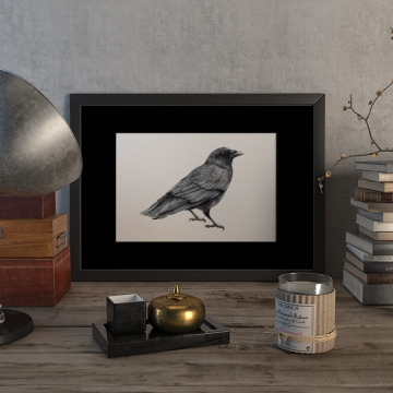 Crow – original artwork by Aga Grandowicz.