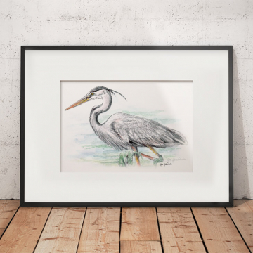 Great blue heron #2 – original artwork by Aga Grandowicz.