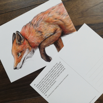 CARD A5 – Red fox – Wildlife illustration by Aga Grandowicz