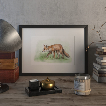 Red fox – original artwork by Aga Grandowicz.