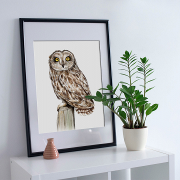 Short-eared owl – A4 fine art prints, limited edition for eachby Aga Grandowicz