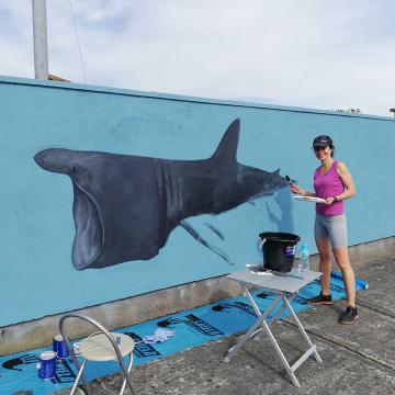 Wildlife mural in Greystones