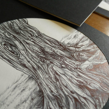 Intricate realistic pen drawings of trees in Marlay Park, Dublin