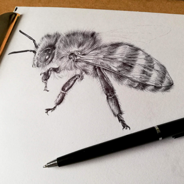 Honey bee art – personal project (work in progress)