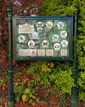 Illustrated information board for Kilcolman about its flora and fauna.