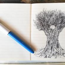 olive-tree-drawing3_w1000px.jpg