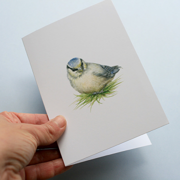 A6 CARD –blue tit chick in the grass
