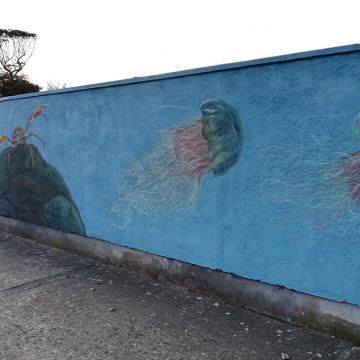 mural_in_greystones_jellyfish_by_aga-grandowicz.jpg