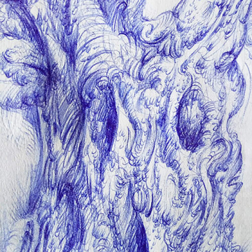 Drawing of an olive tree by Aga Grandowicz, photo 2, closeup