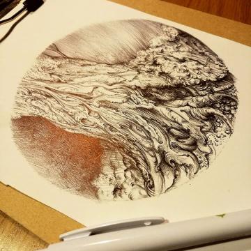 Trees of Marlay Park  – pen drawings by Aga Grandowicz